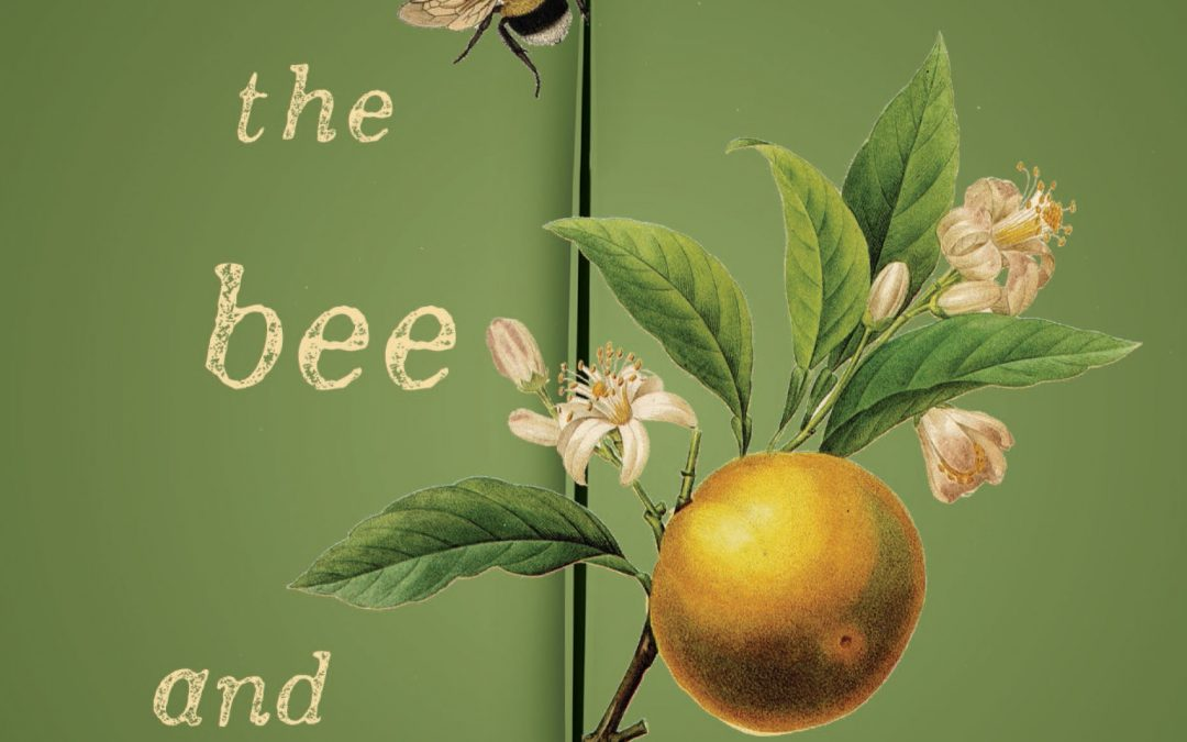 The Bee and the Orange Tree - Melissa Ashley